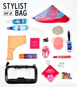 stylist in a bag