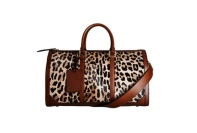 Fall 2013 Leopard bag