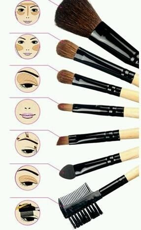 brushes for contouring and highlighting. basic makeup brush cheat sheet brushes for contouring and highlighting n